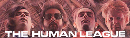 header-human-league.jpg
